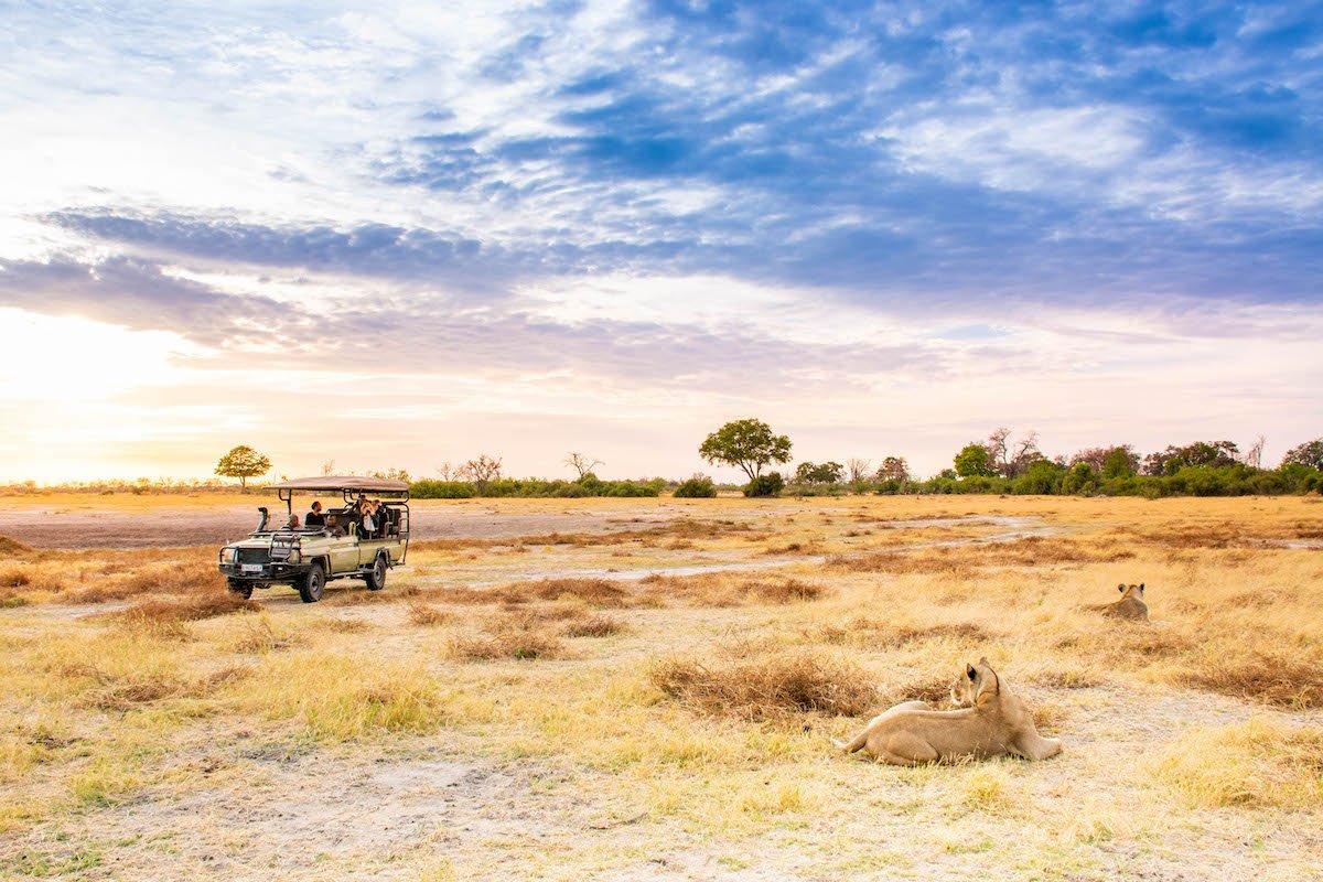 Solo Safaris